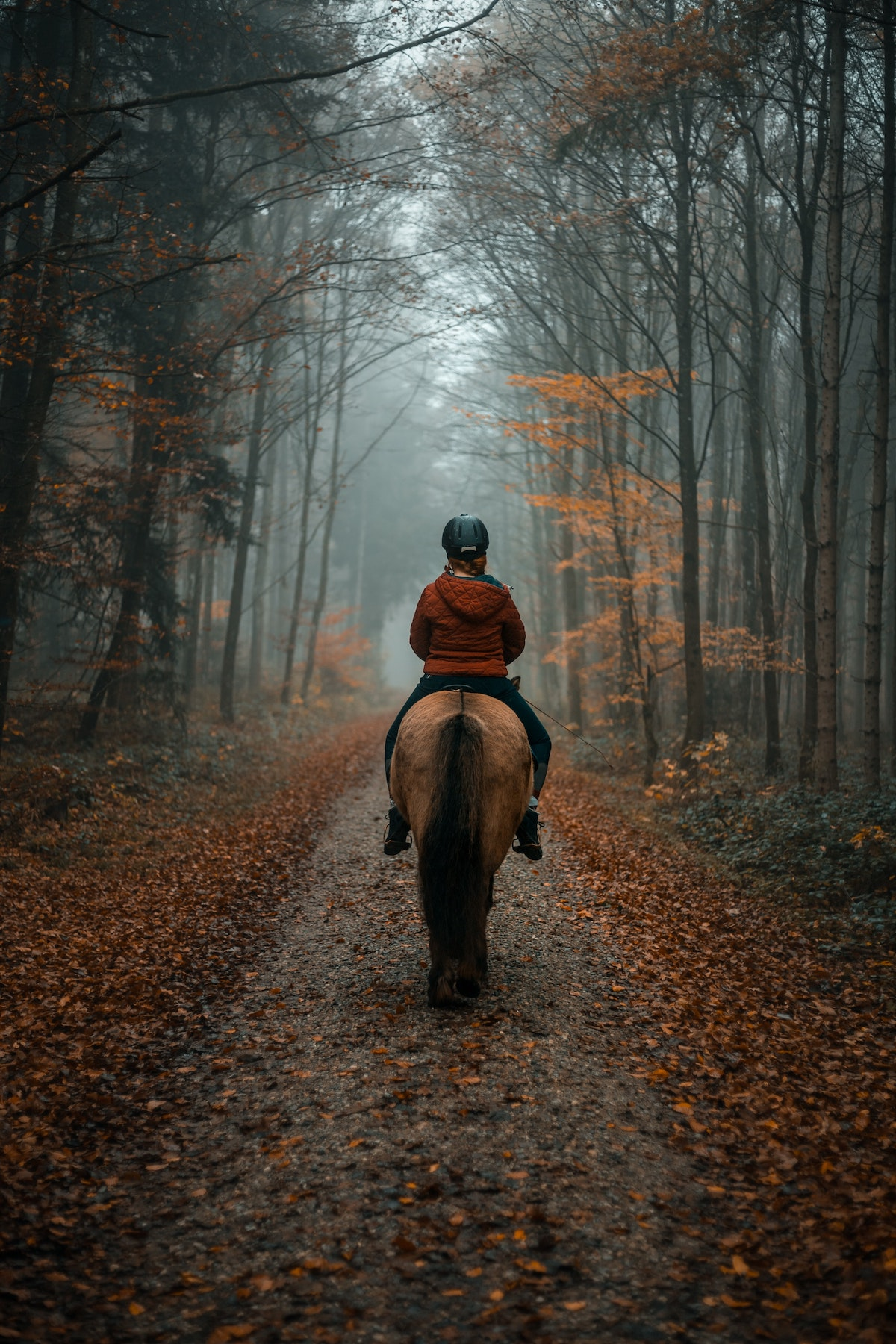 Lady Riding a Horse